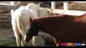 Pretty farm girl tribbing with novice boyfriend
